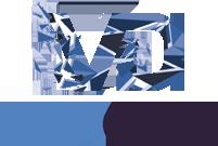 Vinyl Detail Logo